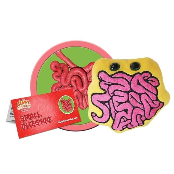 Giant Microbes Small Intestine