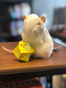 Giant Microbes White Lab Mouse