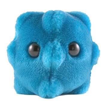 Giant Microbes Common Cold