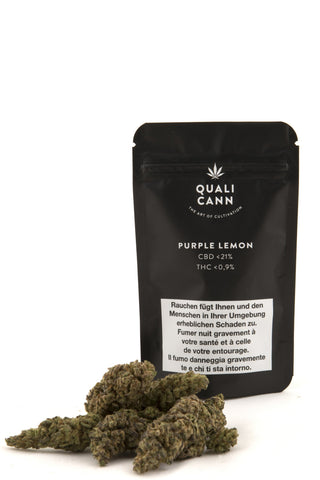 Purple Lemon Indoor mit bis zu 21% CBD - CBD Discounter