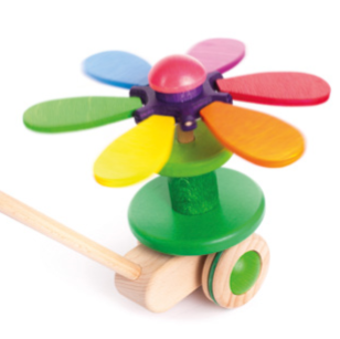 Flower Push Toy