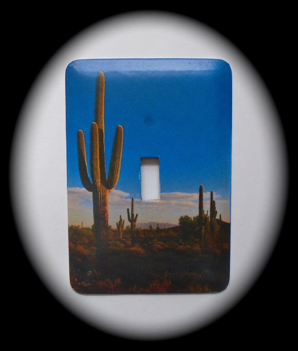 Single Switch Plate ~ Cactus