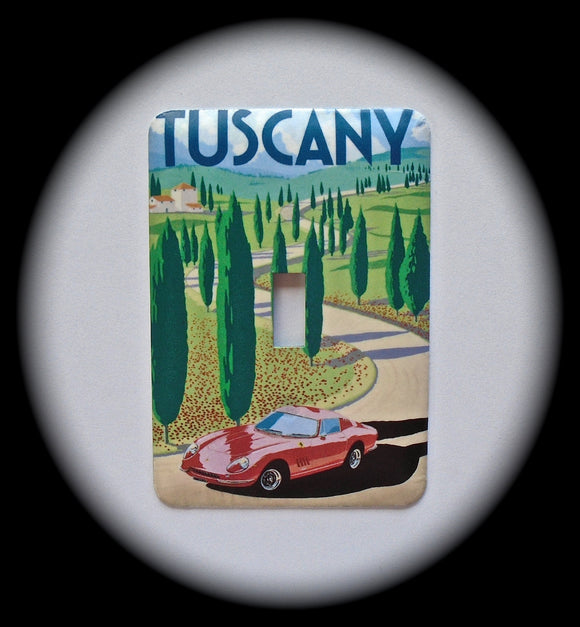 Metal Single Toggle Switch Plate Cover ~ Tuscany Italy - Just Switch It 2