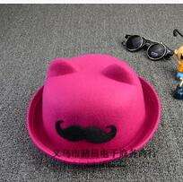 10pcs/lot free shipping Women Men Woolen Roll Brim Dome Hats Unisex  Classic Fedora Hats casual winter solid hat free