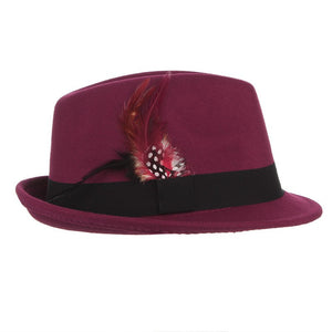 Euramerican Style Men Wo Fedora Feather Decorative Solid Felt Trilby Cap Church Hat Casual Jazz Caps Male Fedoras