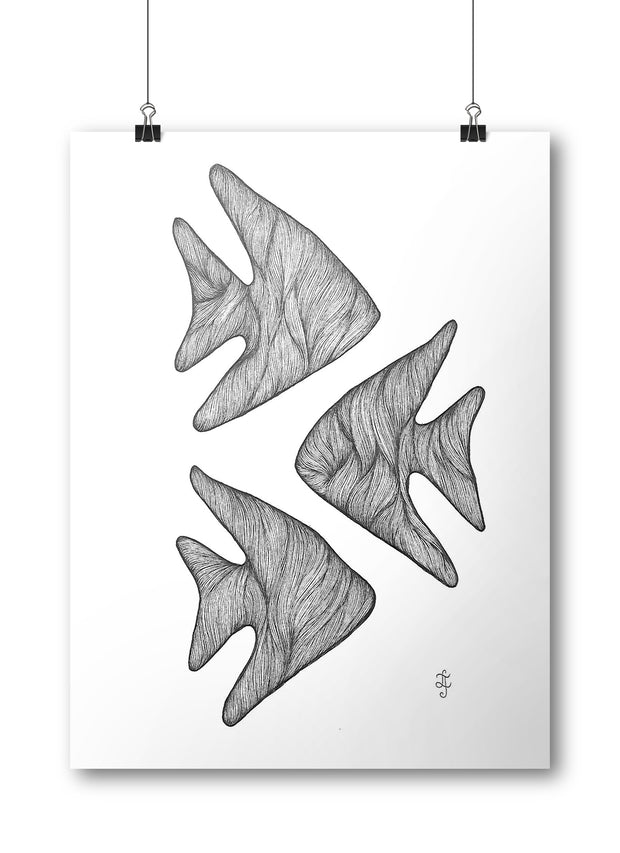Fish Poster:Wildoy