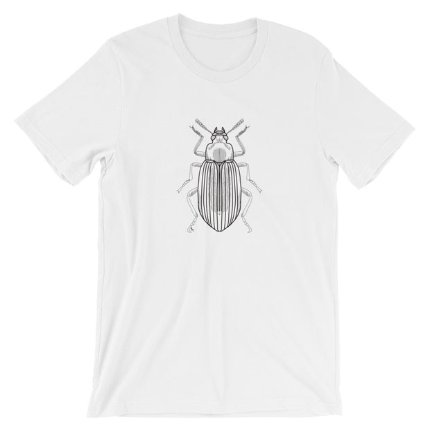 Beetle T-Shirt:Wildoy