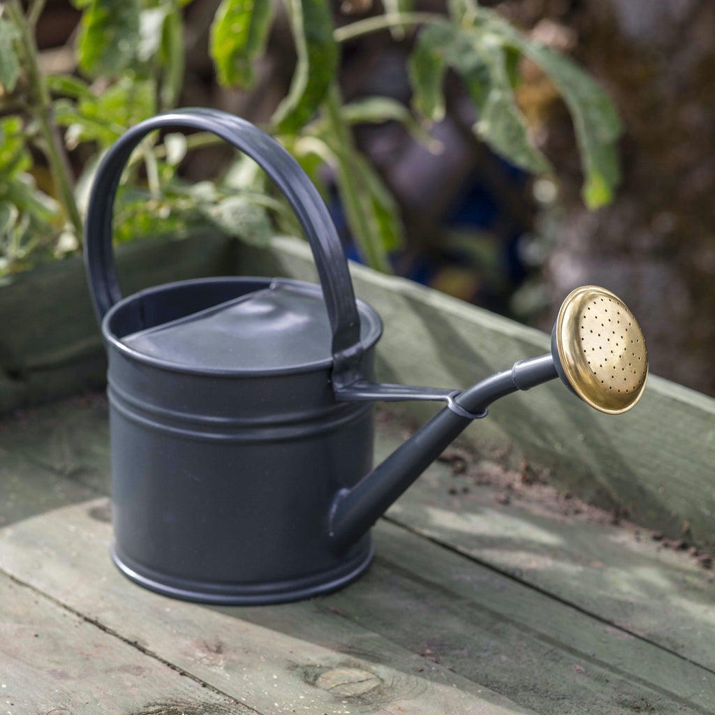 Grey Steel 1.5L Watering Can