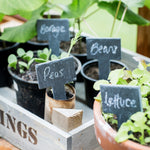 Slate Set Of Garden Greenhouse Tags