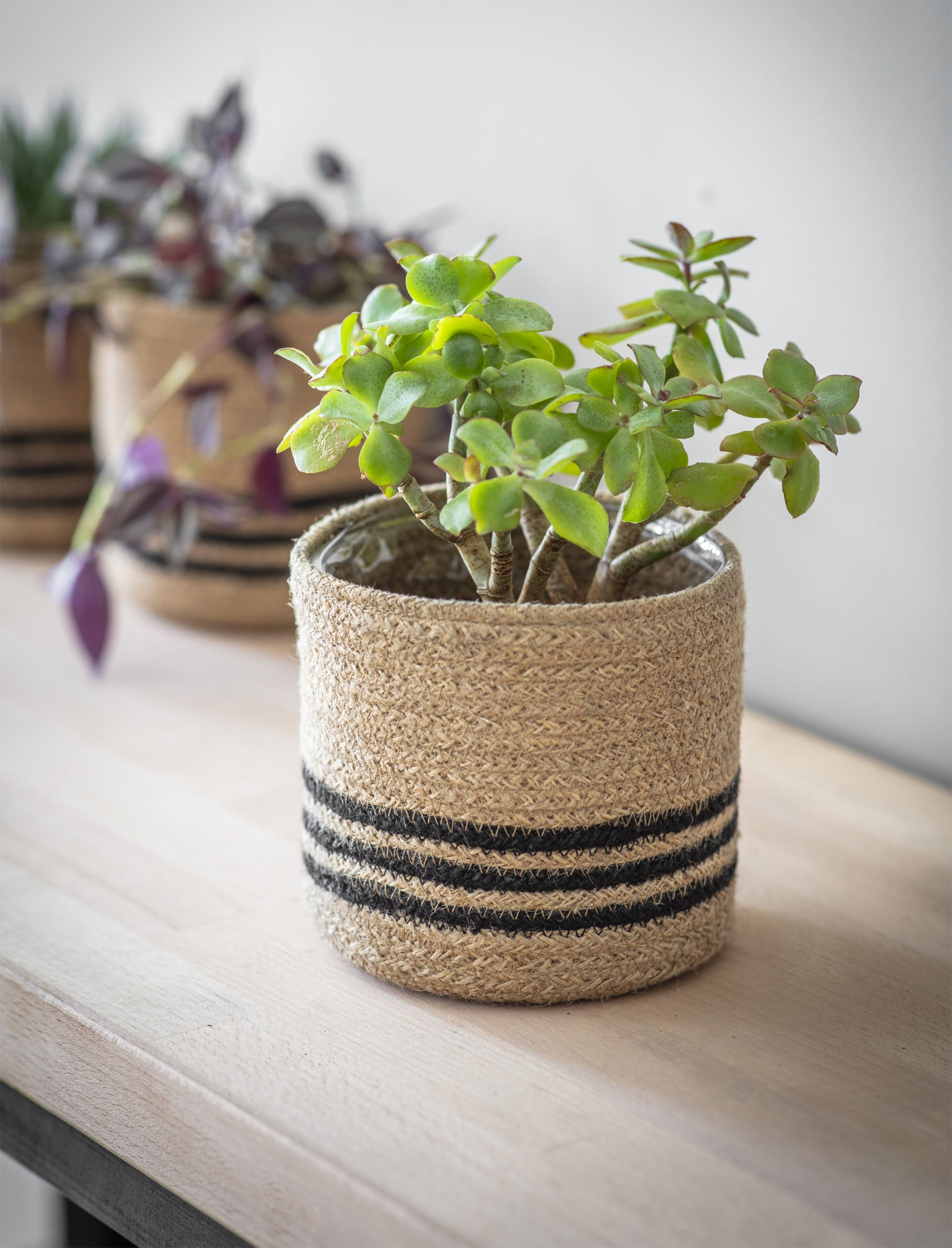Jute Stripe Pot