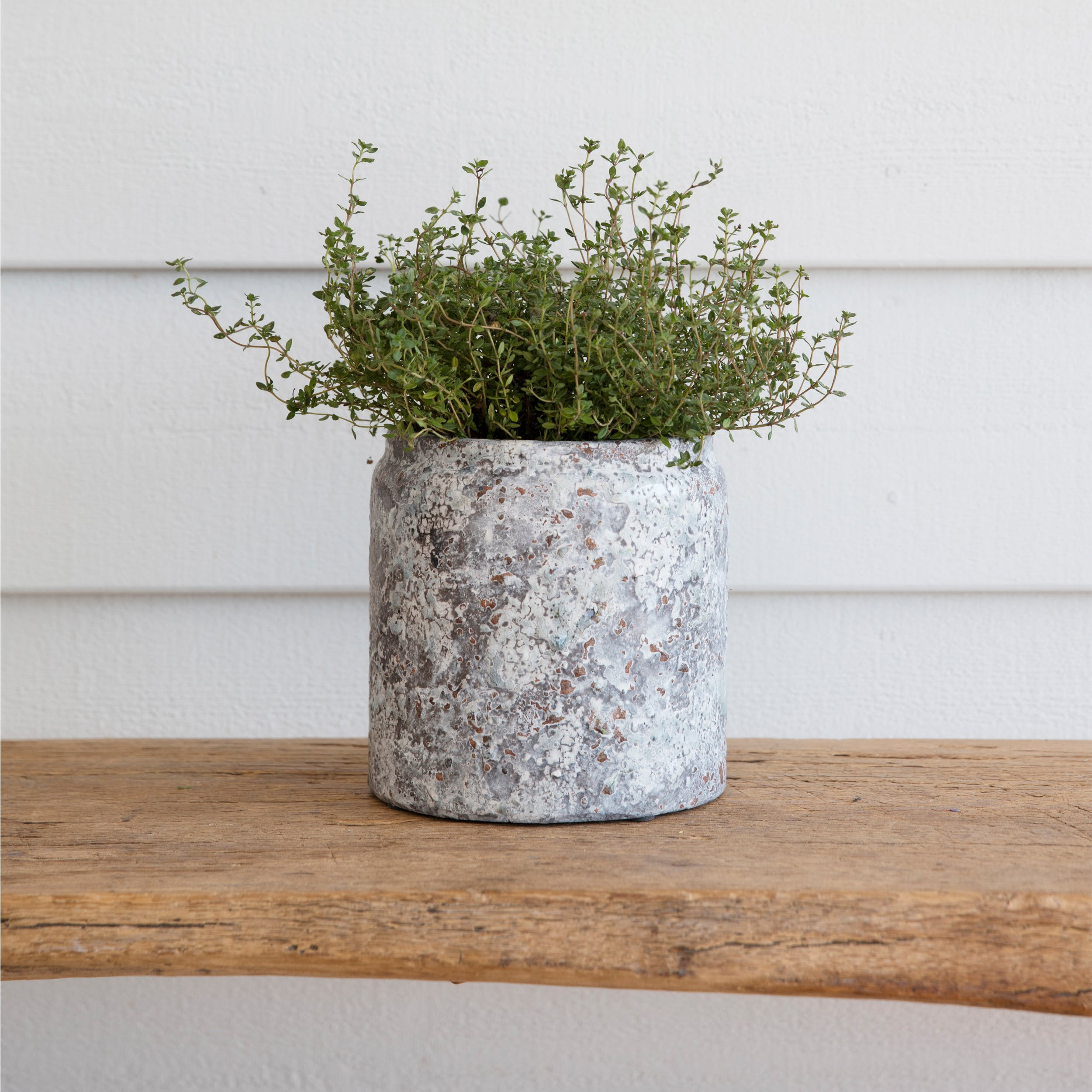 Ceramic Withington Pot - Large