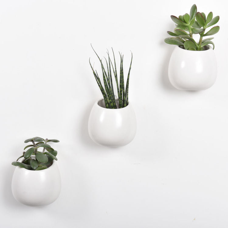 Ceramic Wall Storage Pot