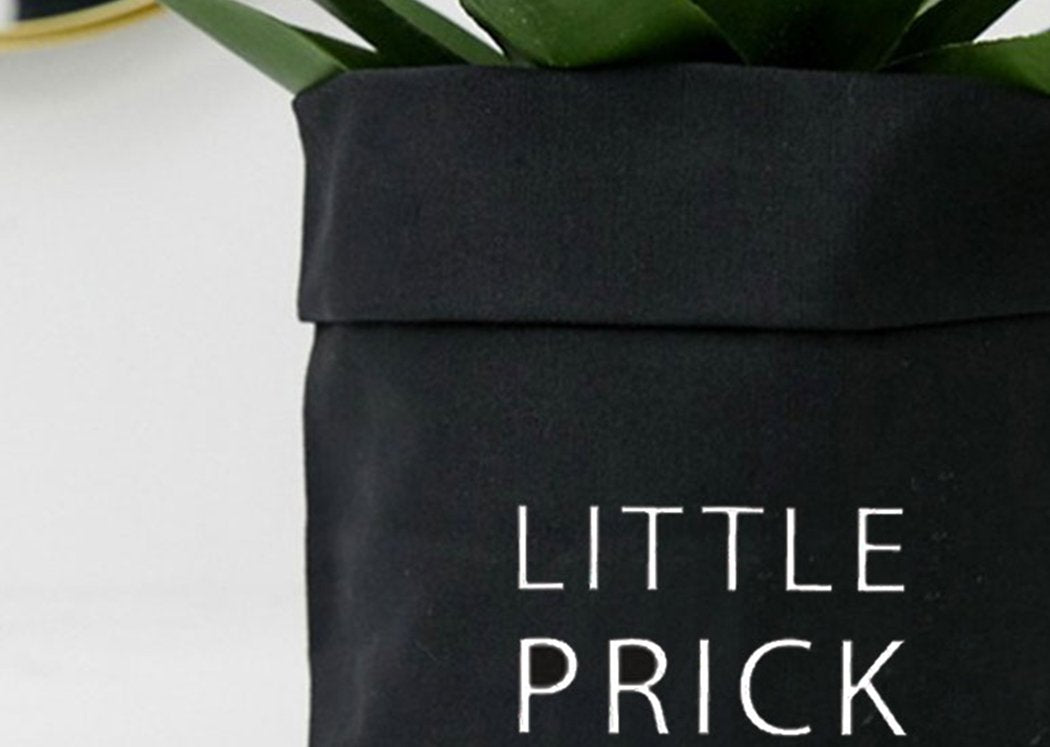 Little Prick Canvas Container