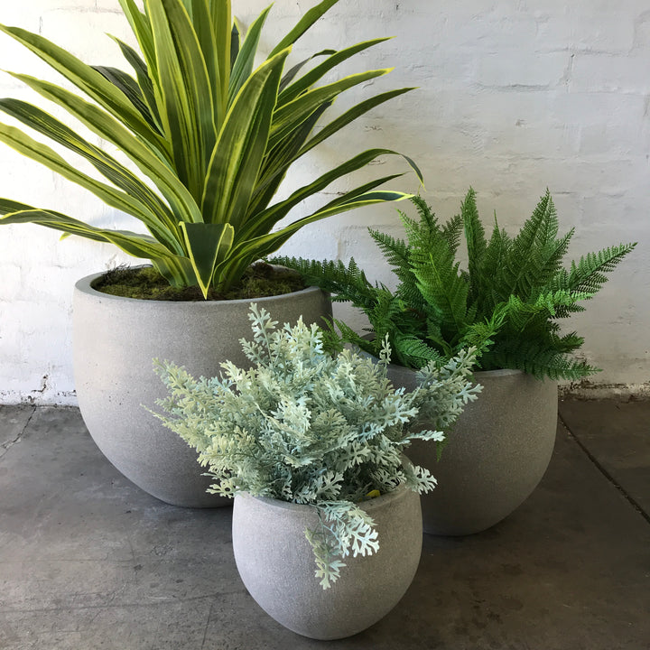 Set of 3 UV Protected Plants