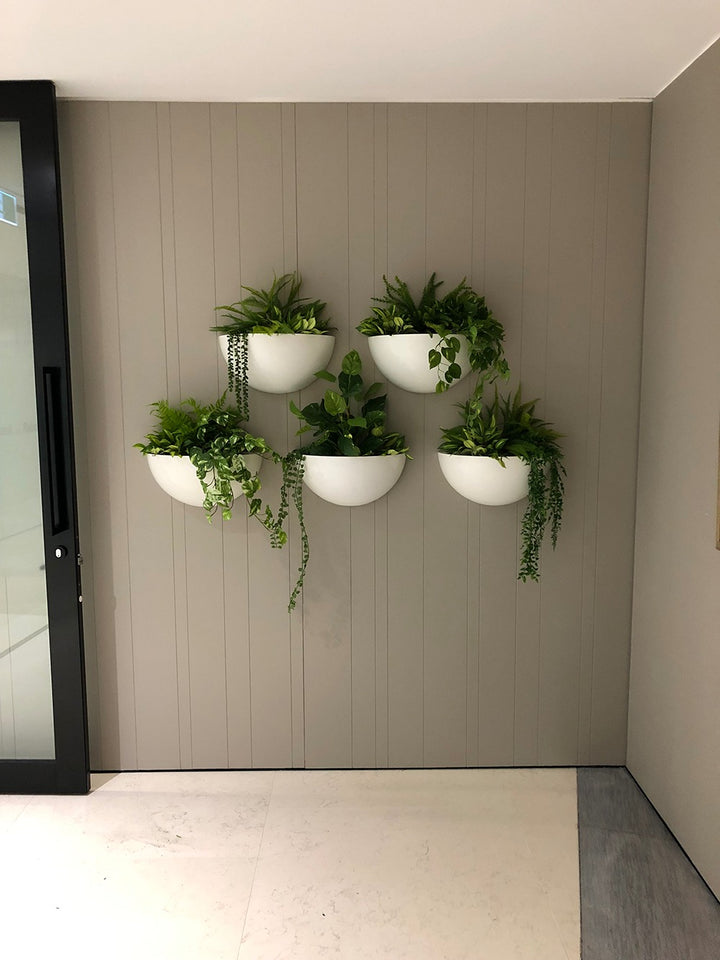 Wall Planters #4