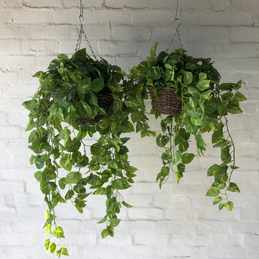 Large Artificial Pothos Hanging Baskets