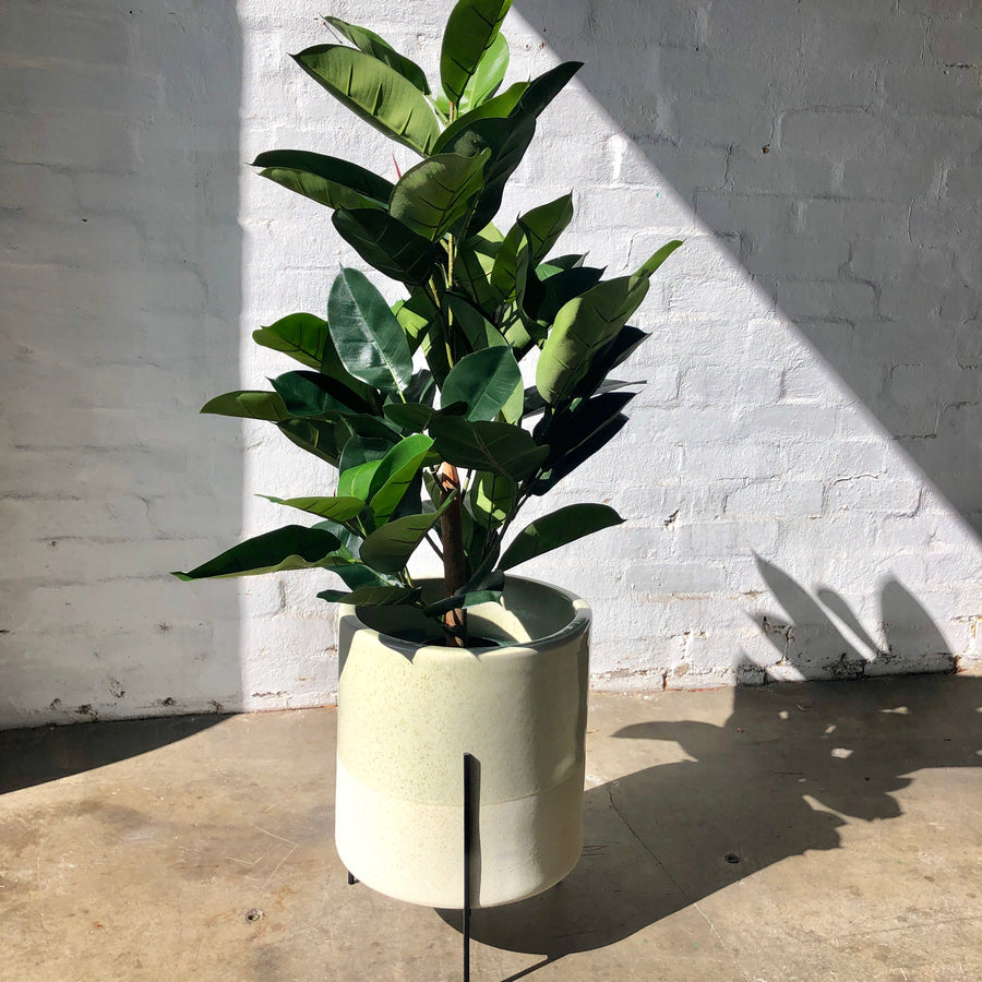 Artificial Rubber Tree - 130cm