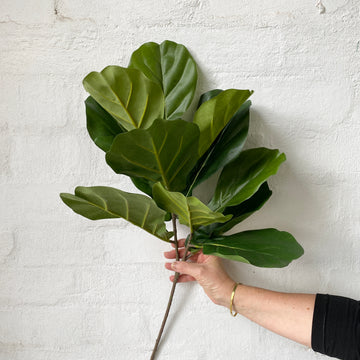 Fiddle Leaf Stem (Artificial)