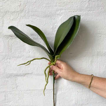 Orchid Leaf - Short (Artificial)