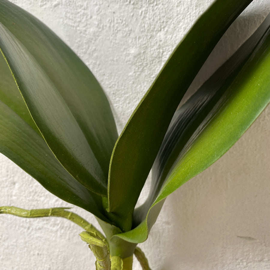 Artificial Orchid Leaf - Short