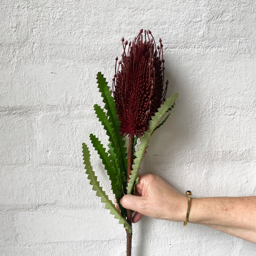 Artificial Banksia Stem (Red)