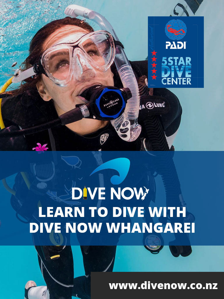 Best Selling Dive Gear