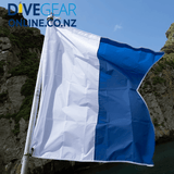 Dive flag with spring