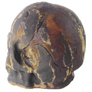Sm Skull Head Statue, 4.5 inches H x 4.5 inches W, FREE SHIPPING