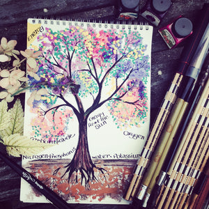 Wild Art guided therapy sessions