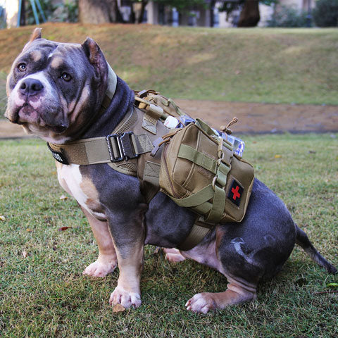 Tacticalxmen Tactical Dog Harness Vest with Handle&accessaries bags,Military Working Dog Vest No-Pull Adjustable Training Harness with Leash Clips for Walking Hiking Hunting