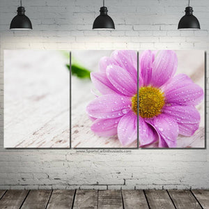 Canvas 3pcs FREE & Fast Shipping Worldwide!!