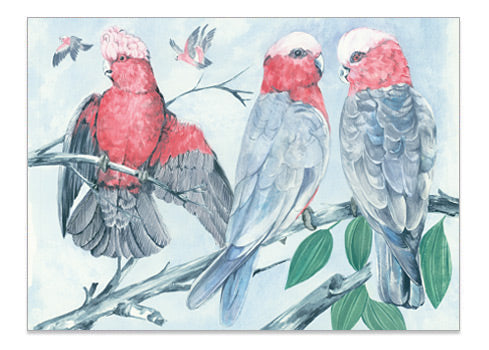 Australian Parrot Pink Galah - A6 Art Card Helen Ashley Designs