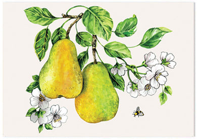 Botanical Fruit Pear - A6 Art Card