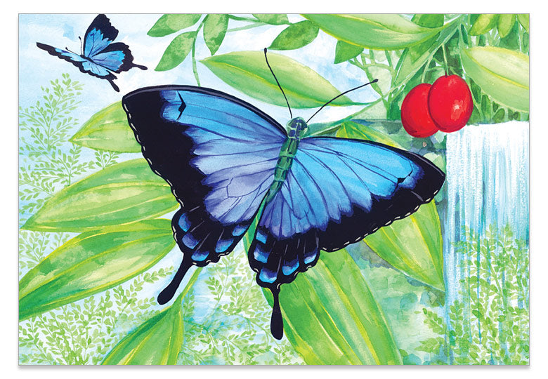 Ulysses Butterfly with Waterfall - Print