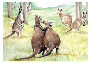 Kissing Kangaroo - A6 Art Card