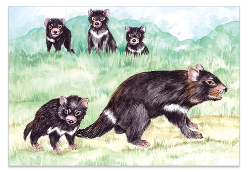 Tasmanian Devil A6 Art Card