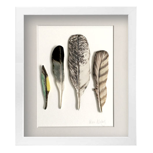 Bush Birds - Feathers Framed