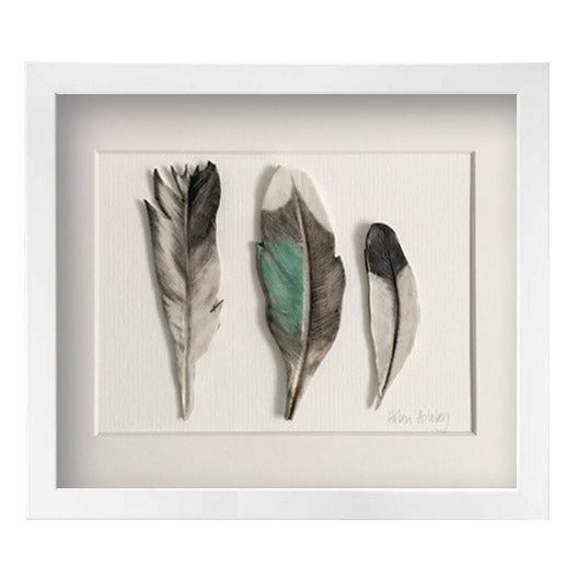 Duck and Magpie - Feathers Framed