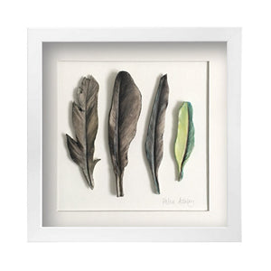 Pigeon Green  - Feathers Framed