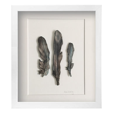 Smokey Dove - Feathers Framed