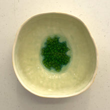Porcelain Bowl - Rockmelon