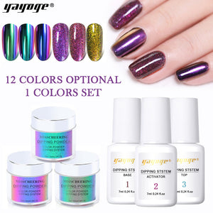4Pcs/Set 4in1 Dipping Powder Set (Extension/Dipping/Mirror/Carving) - YAYOGE Official