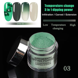 US WAREHOUSE 3IN1 Chameleon Extension Carving Dipping Powder