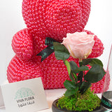Red Pearl Bear Bundle 1