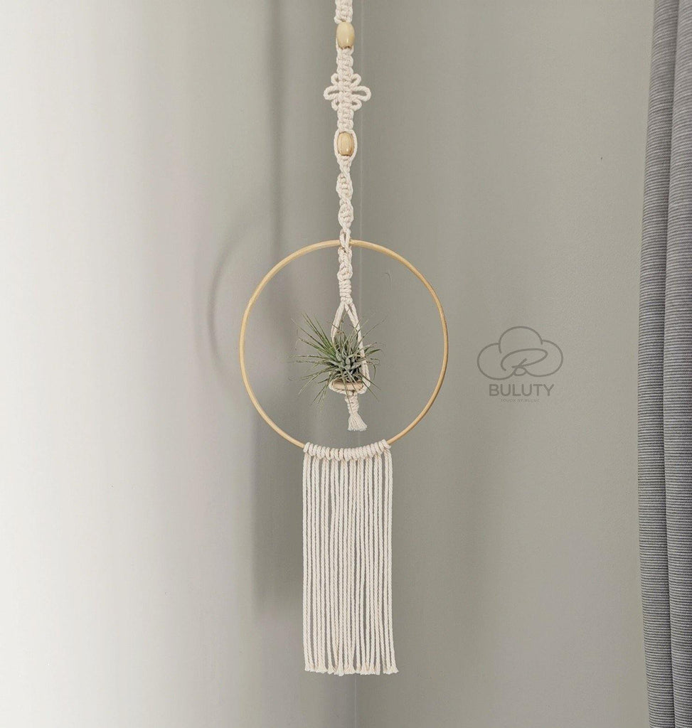 Macrame Air Plant and Hanger - Plant Optional - Ideal for displaying on the wall or from the ceiling - Handmade, Color options - Buluty