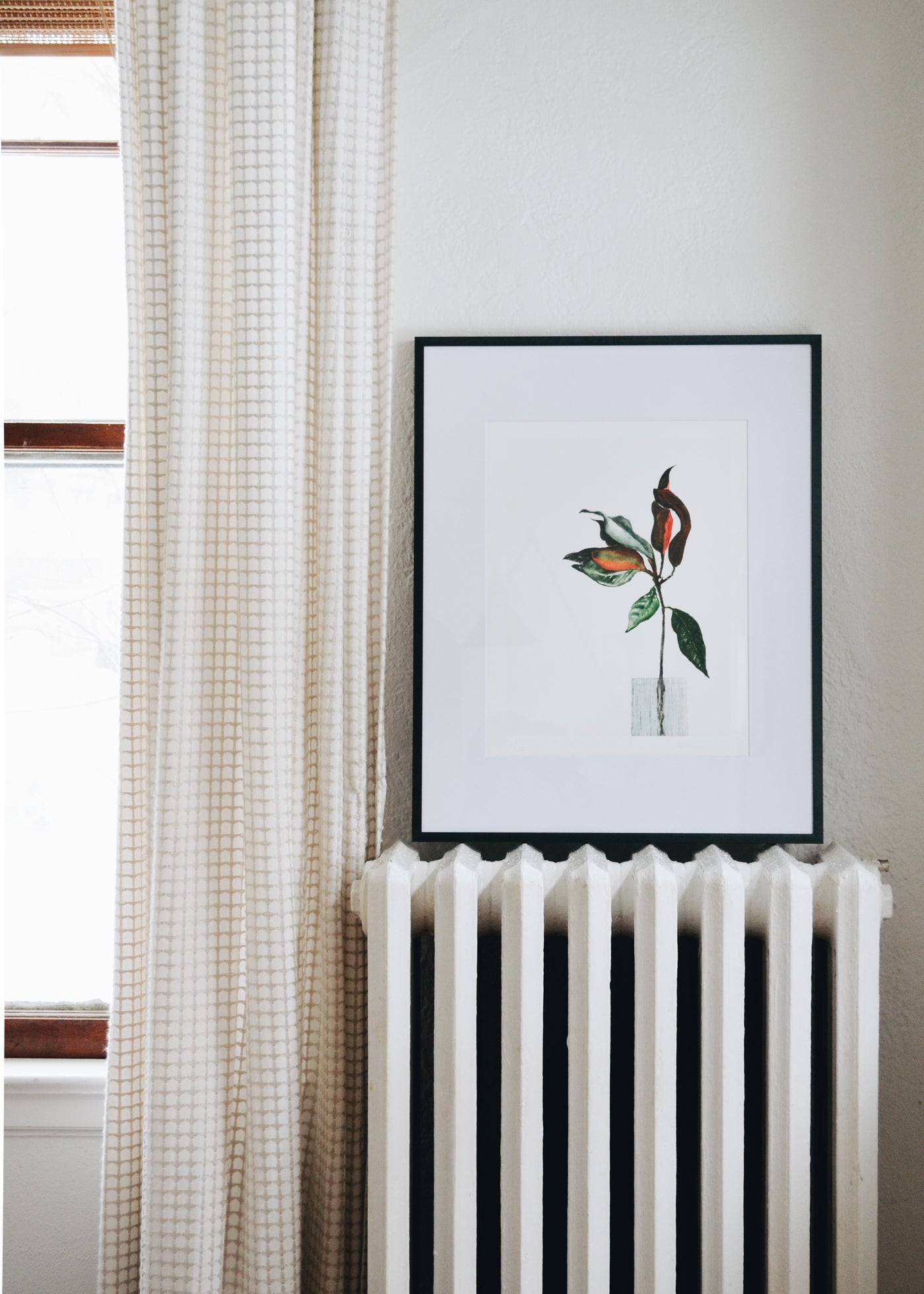 Katie French Perez Magnolia Branch Art Print (no. 1)