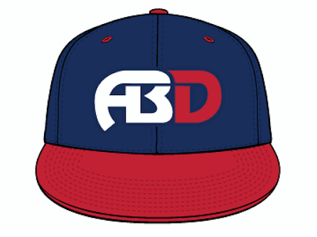 Image of TEAM HAT NAVY