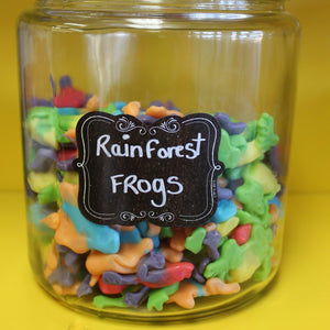Rain Forest Frogs