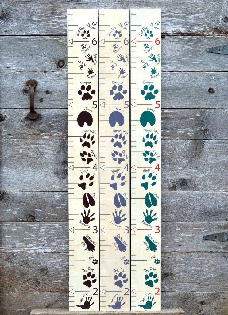 animal tracks nursery boys growth chart