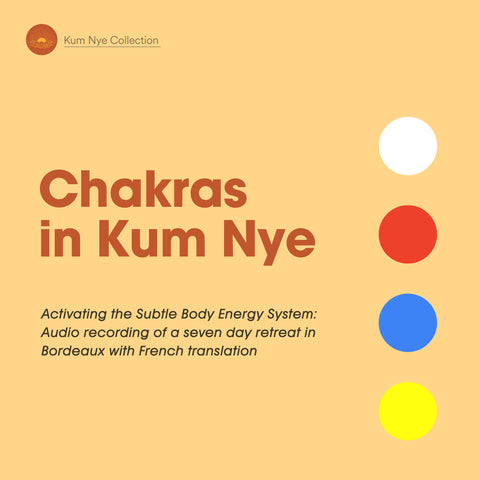 Chakras in Kum Nye - Dharma Publishing